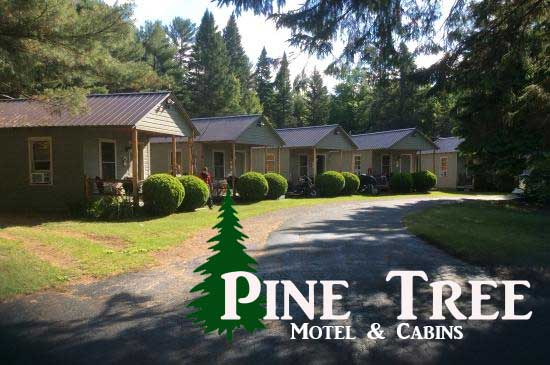 Stay at the Pine Tree Motel & Cabins